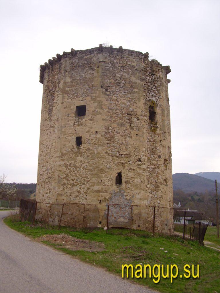 Чоргуньская башня, вид со стороны дороги.