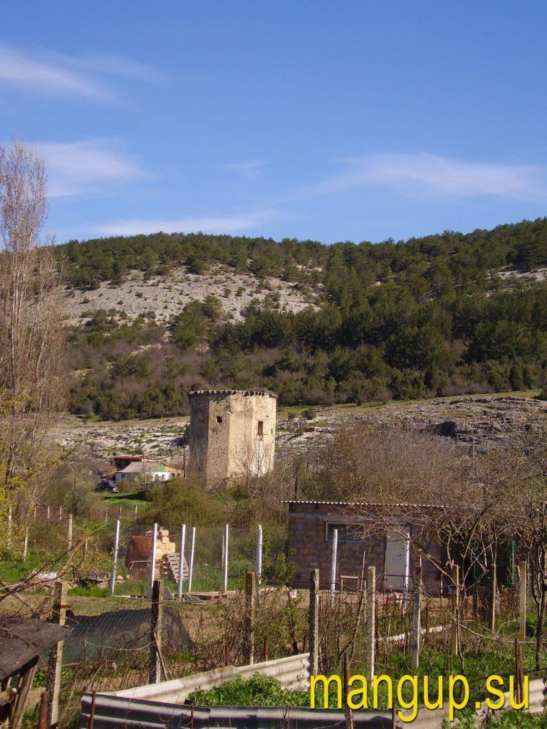 Чоргуньская башня вид со стороны села.