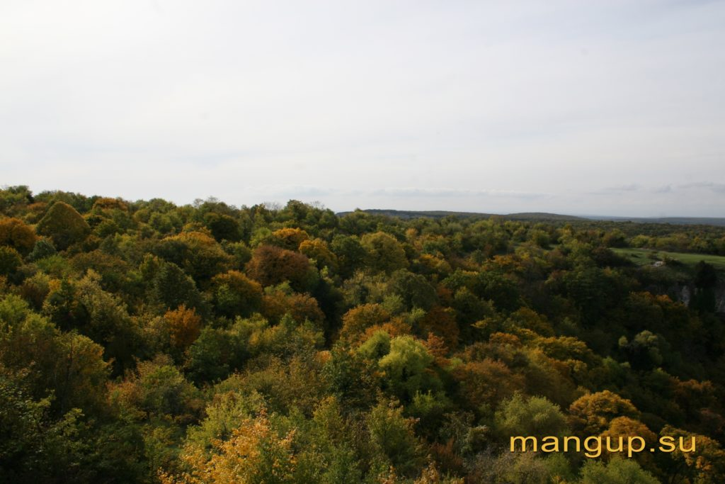Вид на верховья Капу-дере со стены мангупской цитадели.