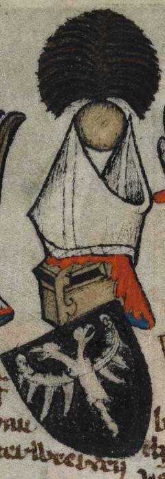 Герб графа Саарверде